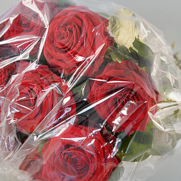 Flower wrapping made of PLA-blend bio-flex. Foto: F. Kesselring, FKuR Willich
